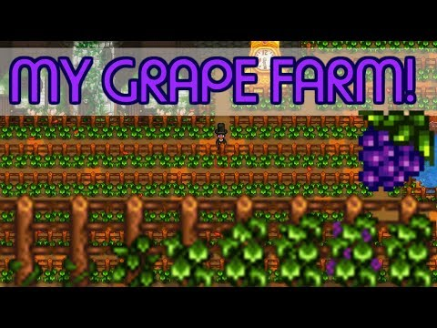 🍇The Biggest Grape Farm EVER!🍇 - *VINEYARD!* - Stardew Valley Farm Project