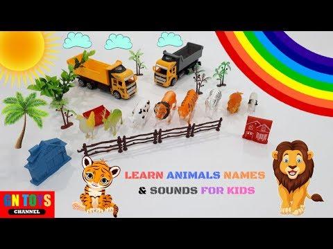 learn-animal-names-and-sounds-for-kids- -animal-toys-for-children- -learn-animal-for-kids