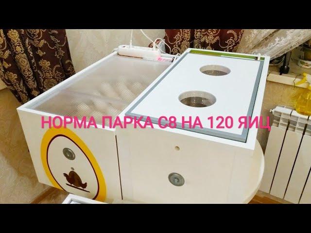 У МЕНЯ НОВЫЙ ИНКУБАТОР Норма Парка с8 на 120яиц ❗