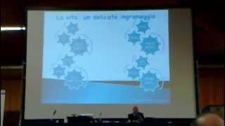 Dr. Stefano Limontini, Medicina Cellulare