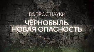 Чернобыль. Новая опасность   Вопрос науки с Алексеем Семихатовым