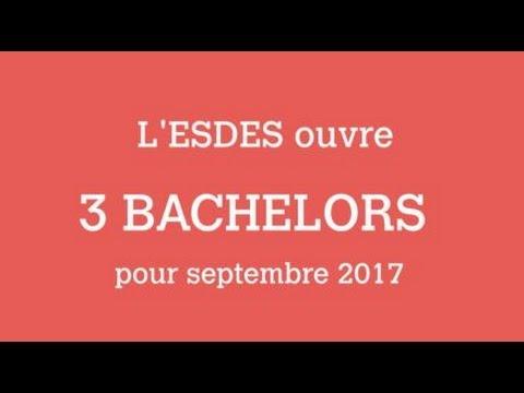 L'ESDES ouvre 3 bachelors  pour septembre 2017