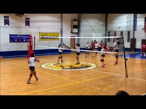 HOPE Christian High School Gilrs Volleyball Team Free Spiking