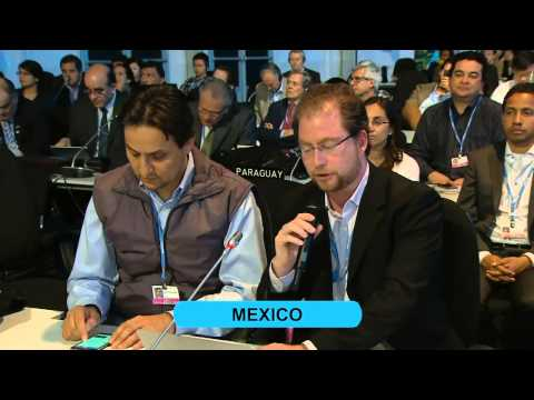 COP20 - Lima:  Conference of the Parties COP, resumed 10th meeting cont