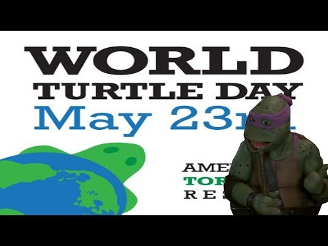 World Turtle Day w/ Donny