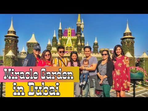 Vlog #12 Part 1: Exploring Miracle Garden in Dubai l Mall of Emirates l 2019-2020
