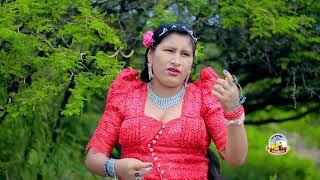 Pascual Yale LOS EXPONENTES DEL CHARANGO - sigo pensando en tu amor