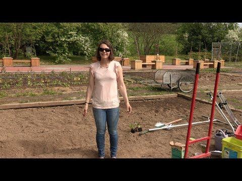 In the Alaska Garden with Heidi Rader – Getting Started in Your Garden