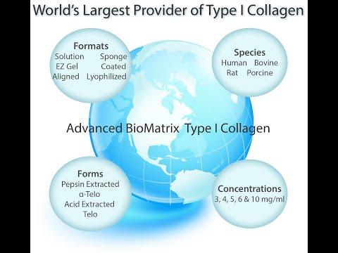 Type 1 Collagen From Advanced BioMatrix