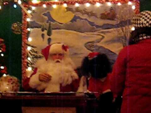 Poodle Dog Visits Santa Claus