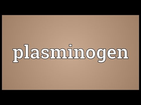 Plasminogen Meaning