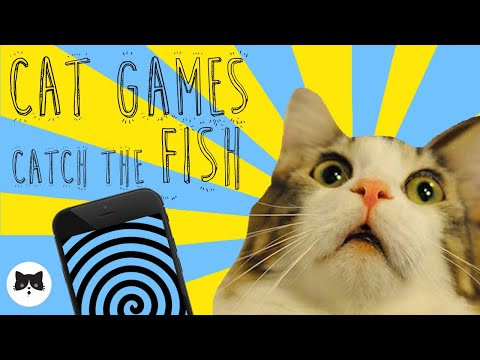 CAT GAMES - Entertaining Videos For Cats - CATCH THE FISH