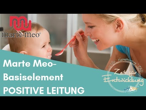 "Marte Meo - Basiselement ""Positive Leitung"""