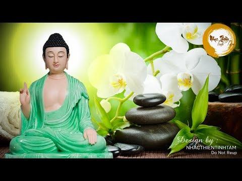 Nhạc thiền Phật giáo không lời giúp bạn tịnh tâm, xua tan muộn phiền