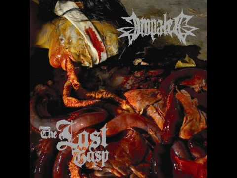 Impaled - You are the Dead