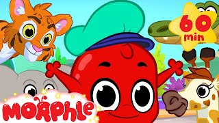 Morphle And The Zoo Animals! (+1 hour funny Morphle kids videos compilation)