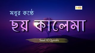 মধুর কণ্ঠে ছয় কালেমা    আরবি বাংলা অর্থসহ    6 Kalimas Recited by Saad Al Qureshi