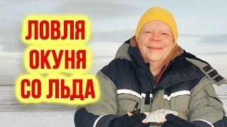 Ловля окуня на мормышку со льда Стоит ли ехать на озеро Треустан на зимнюю рыбалку