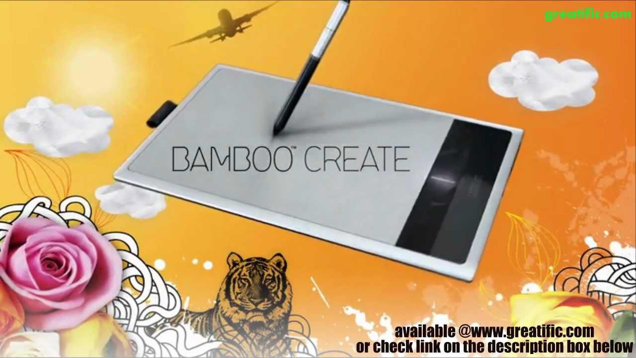 Bamboo Cth 670