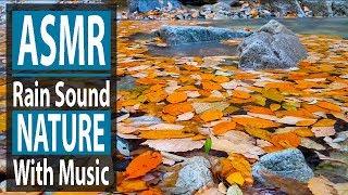 [3시간] 휴식을 위한 음악: 빗소리, 가을🍂, 낙엽🍁, 피아노 연주, 공부음악, 집중음악, 수면음악, 자연의 소리.