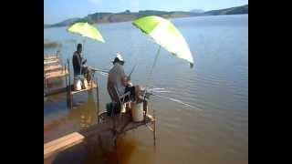 Pescaria de tilápias no frio