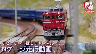 Nゲージ走行動画 TOMIX 7157  ED75-700形電気機関車(後期型) +98741/98742/98743 JR 14・50系客車(八甲田・MOTOトレイン)【鉄道模型/ホビーランドぽち】