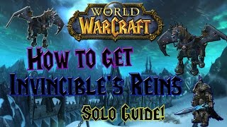 World of Warcraft - How to get Invincible