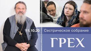 Грех. Собрание 11.10.20 монахинь и сестер милосердия с о. Андреем Лемешонком
