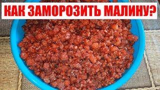 Как заморозить малину с сахаром? Удобный способ заготовки ягод на зиму. ПОЛЕЗНЫЕ СОВЕТЫ MIX