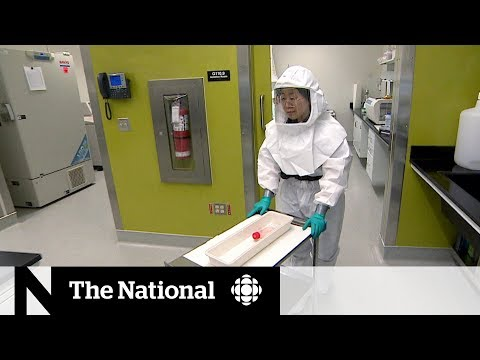 Canada's role in the global race to find a COVID-19 vaccine