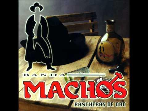 Banda Machos, Ingratos Ojos Míos