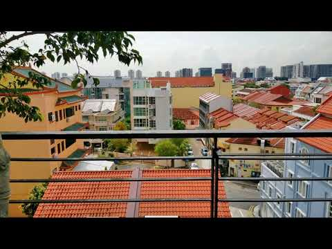 Joo Chiat Freehold Penthouse For sale