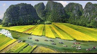 Tam Cốc - Bích Động - cánh đồng lúa nước tuyệt đẹp