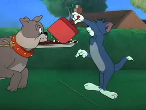 Tom and jerry cane riconoscente avi youtube