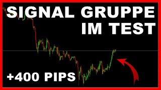 Trading SIGNAL GRUPPE für Forex CFD Handel bei iMarketslive im Test!