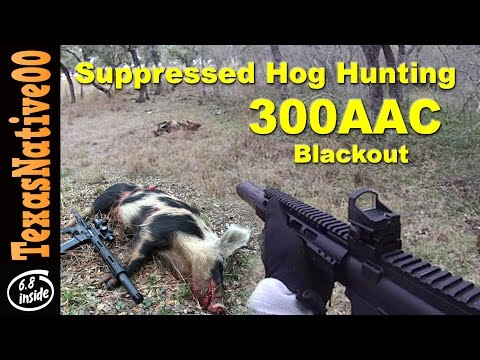Suppressed 300 Blackout First Person Hog Hunting - Vehicular Shooting