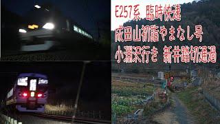 E257系 臨時快速 成田山初詣やまなし号 小淵沢行き 新井踏切通過