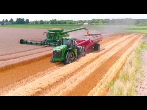 C&G Farms 2016 Illinois Wheat Harvest