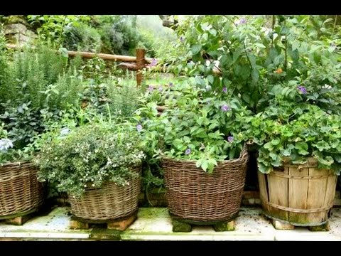 Patio Herb Garden Container