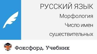 Русский язык. Морфология: Число имен существительных. Центр онлайн-обучения «Фоксфорд»