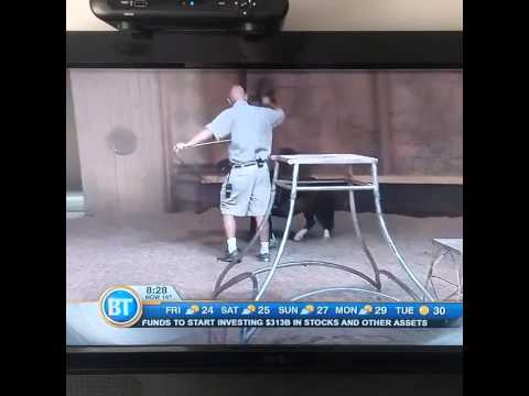 Bowmanville Zoo owner swearing on live TV