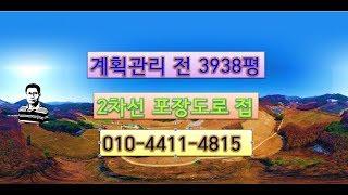 정선부동산 계획관리 전 3938평 정선토지