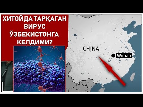 Хитойда тарқаган вирус Ўзбекистонга келдими?