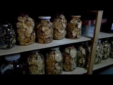 Как сохранить сушеные яблоки на зиму