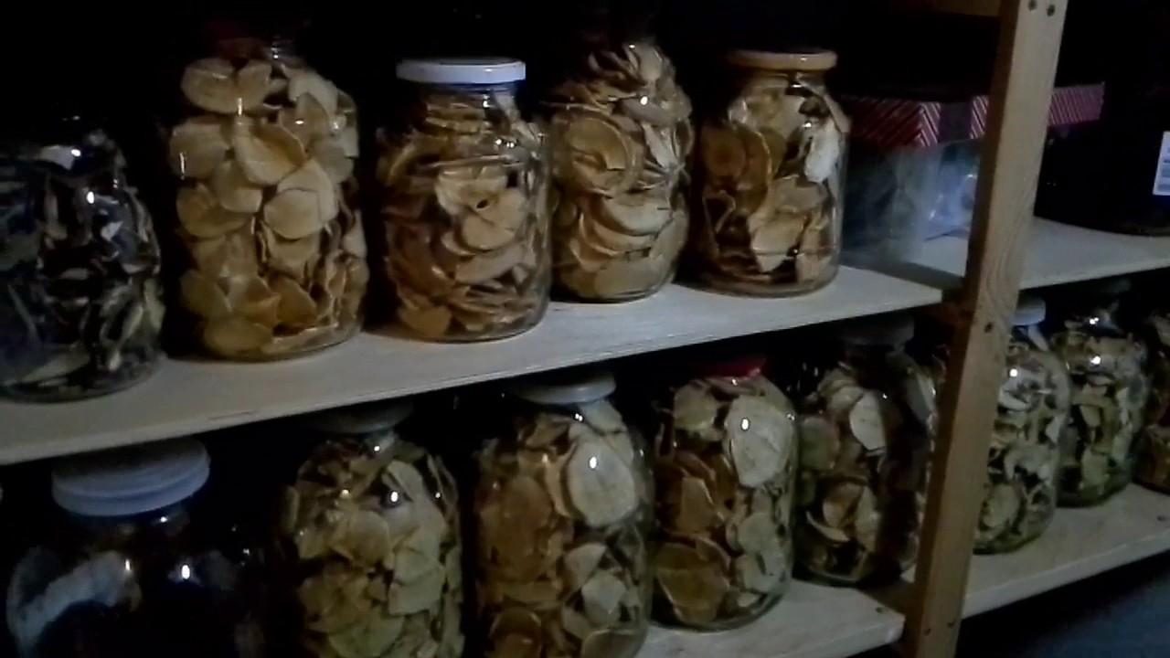 Картинки по запросу яблочные чипсы фото