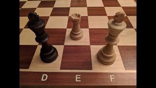 Coding Challenge: Longest Forced Rook Checkmate?