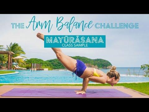 Arm Balance Yoga Challenge Class 2, Mayurasana, Peacock Pose, Sample