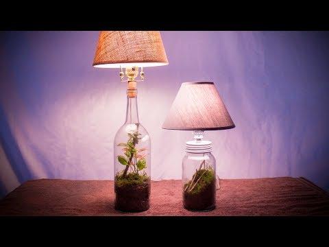 Make a Lamp Terrarium (Lamparium)