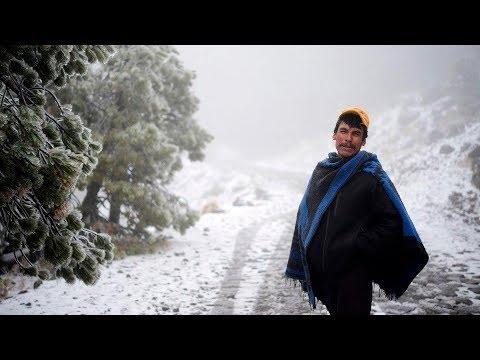 Cae la primera nevada del 2018 en el Cofre de Perote