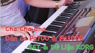 Cha Cha mới trên Korg Pa700 và Pa1000 Jang Organ